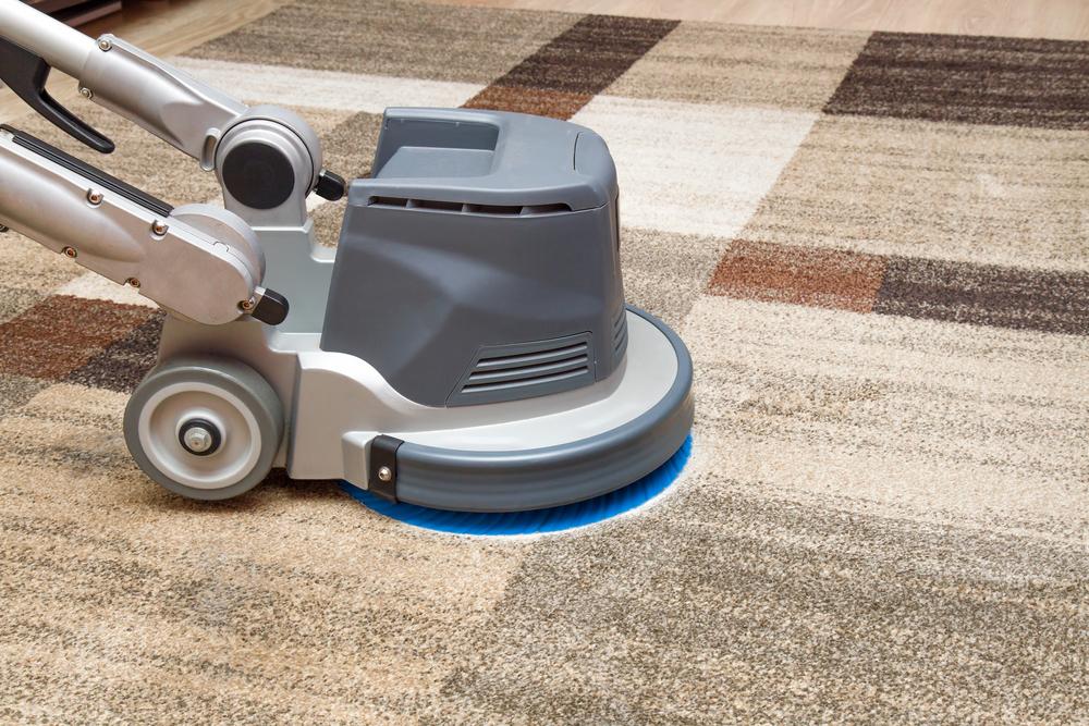Best Carpet Cleaner for Pets